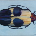 Beetle, oil on canvas, 12 x 16 inches