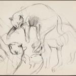 Nona, pencil on archival paper, 11 x 14 inches