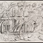 Spiderplants, graphite on paper, 26 x 40 inches